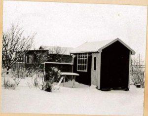 Koloni 83 vinter